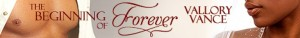 cropped-vv_the-beginning-of-forever_banner.jpg