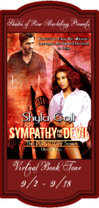 Sympathy for the Devil VBT Banner